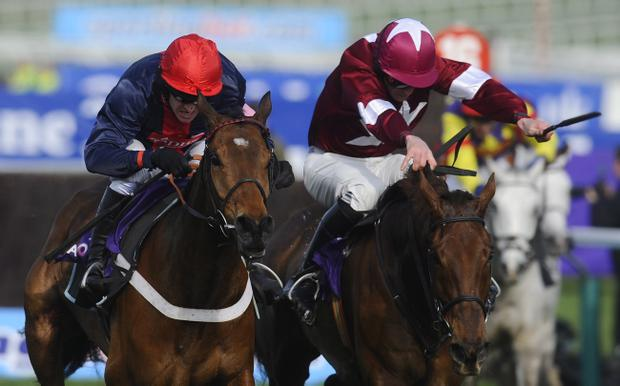 Bobs Worth (left) could run for the first time since March at Newbury on Saturday