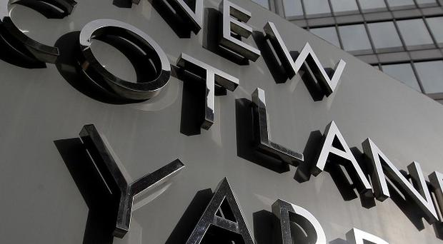 Metropolitan Police constables Kevin Hughes, 36, and David Hair, 42, have been cleared of using threatening words or behaviour.