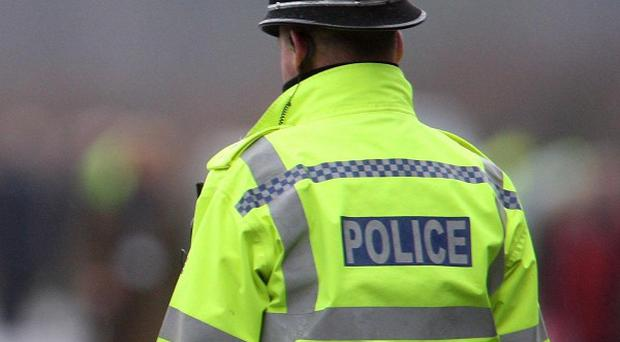 Suffolk Police are investigating after a small plane collided with a tree near Hadleigh