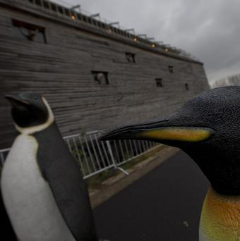 Lifesize replicas of penguins are seen outside a full-scale replica of Noah's Ark (AP)