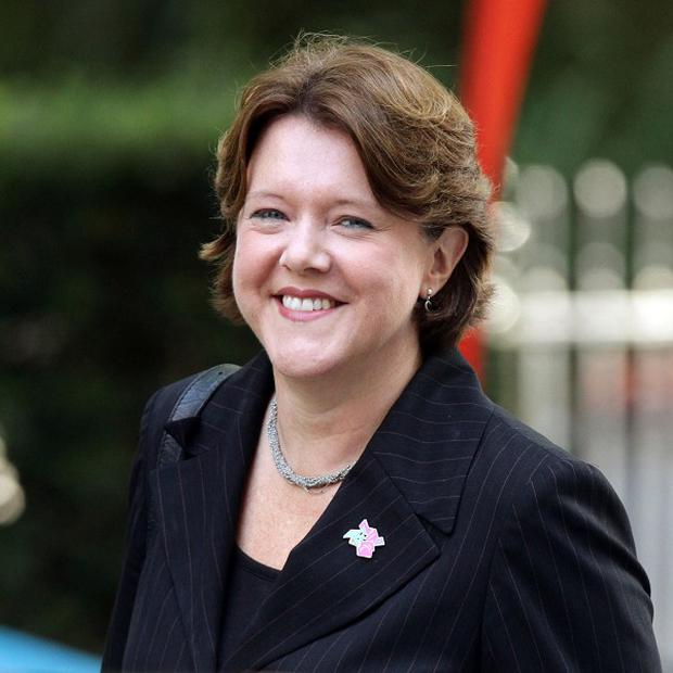 Culture Secretary Maria Miller's expenses claims have been called into question