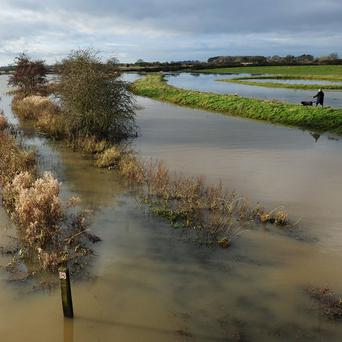 A dog walker finds a path alongside the floodwater from the Pocklington Canal in East Yorkshire after more rain fell over the country