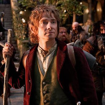 Martin Freeman says he doesn't have expectations of massive success following his role in the Hobbit movies