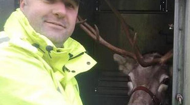 Pc John Hutchings with Rudolph the reindeer (Northamptonshire Police/PA)
