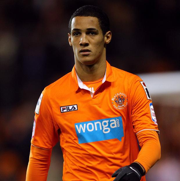 Tom Ince has scored 13 goals in 21 npower Championship games this season