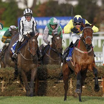 Anonis (right) takes to hurdling well at Leopardstown