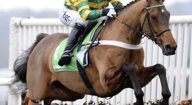 AP McCoy won on Mischievous Milly at Taunton
