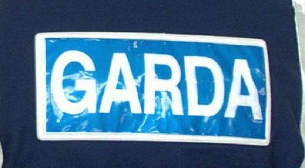 Gardai appealed for information after the theft of an urn of ashes from a house in Tallaght
