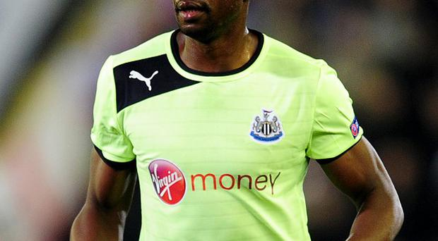 Shola Ameobi will not be representing Nigeria in the African Nations Cup
