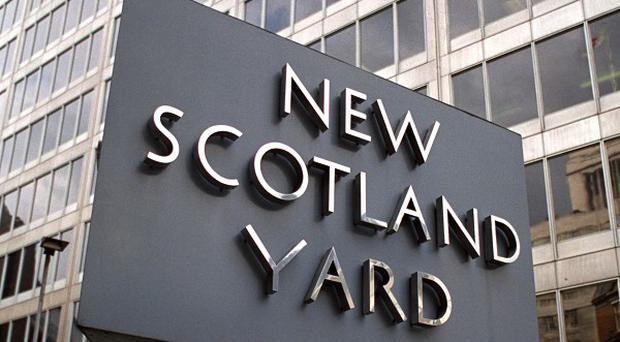 A Scotland Yard spokeswoman said the majority of the cases 'were at the less serious end of the scale'