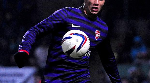 Marouane Chamakh has struggled to claim a regular place in Arsenal's first team
