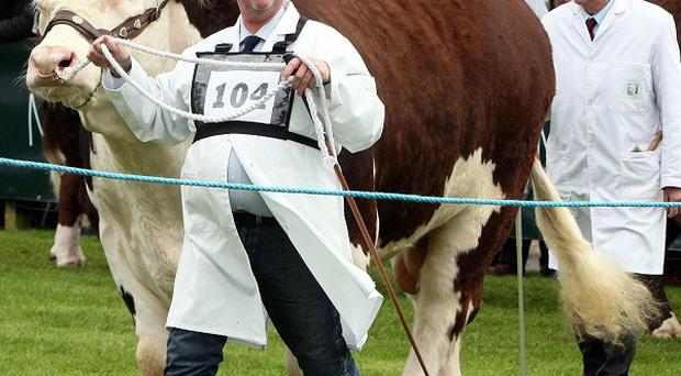 The Balmoral agricultural show will move to a new site at the Maze on the outskirts of Lisburn