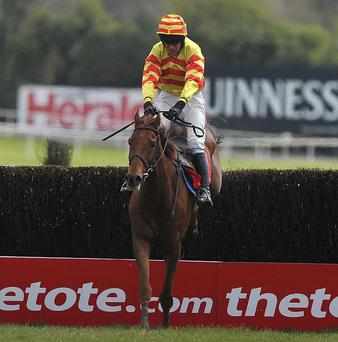 China Rock may head for the Ryanair Chase