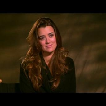 Cote de Pablo stars as Ziva David in NCIS