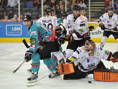 Belfast Giants' Greg Stewart in action against Sheffield Steelers at the Odyssey Arena last week