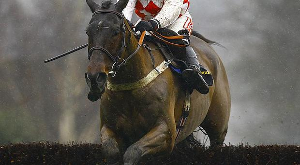 Flemenstar's primary focus is on the Hennessy Gold Cup