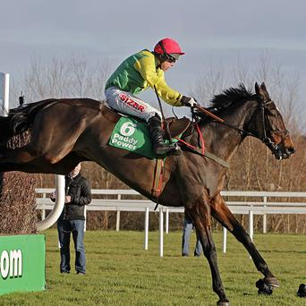 Sizing Europe is an entry for the Queen Mother at Cheltenham