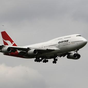 A large python hitched a ride on a Qantas Airways plane