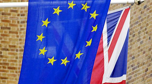 Only nine per cent of firms want closer integration with the EU, a survey suggests