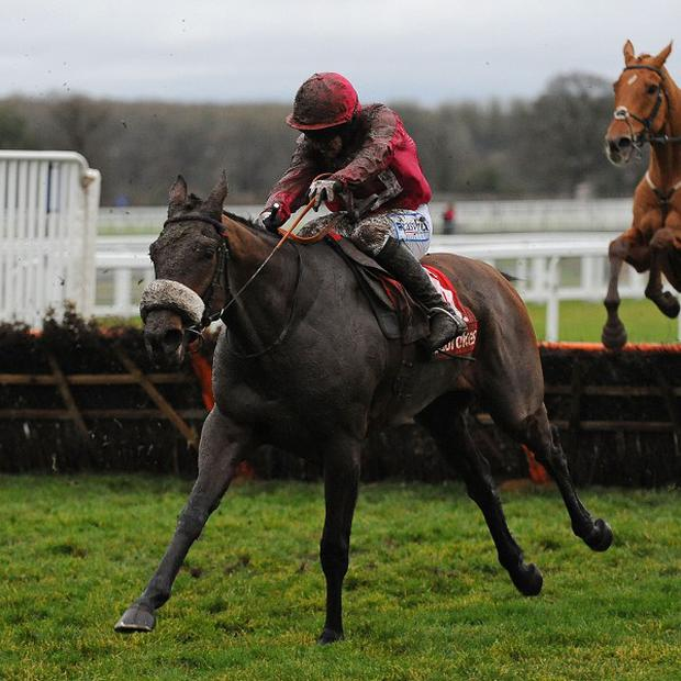Cause Of Causes edged a thrilling victory at Navan