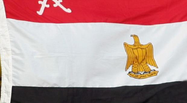 An Egyptian criminal court has invoked a presidential amnesty and dismissed charges against 379 people
