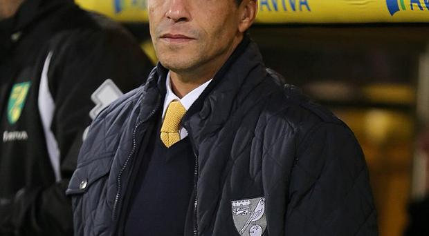 Chris Hughton is looking to bolster his attacking options in the January transfer window