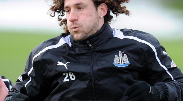 Fabricio Coloccini, pictured, has been backed to deliver at Newcastle by manager Alan Pardew