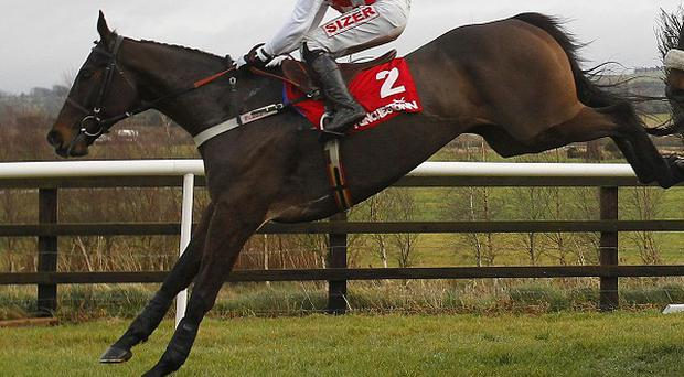 Flemenstar is in good condition ahead of the Henessy Gold Cup