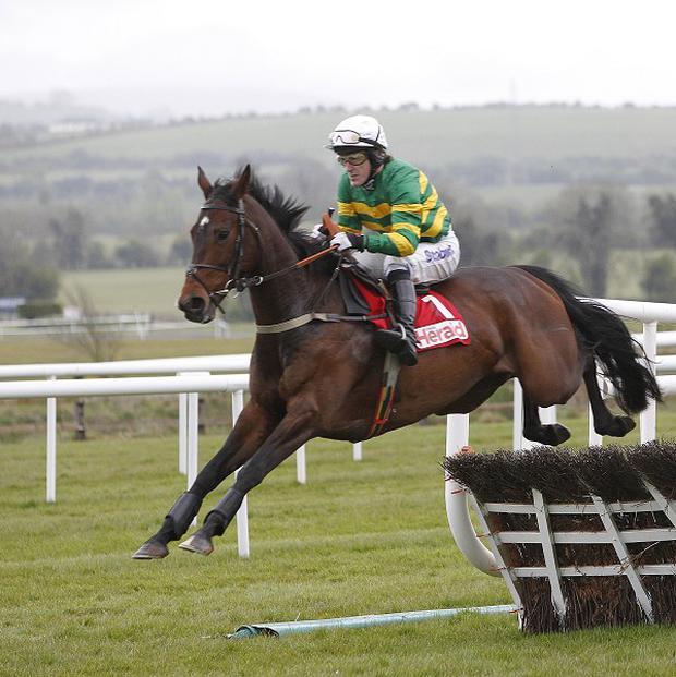 Alderwood is set for a run at Punchestown on Sunday