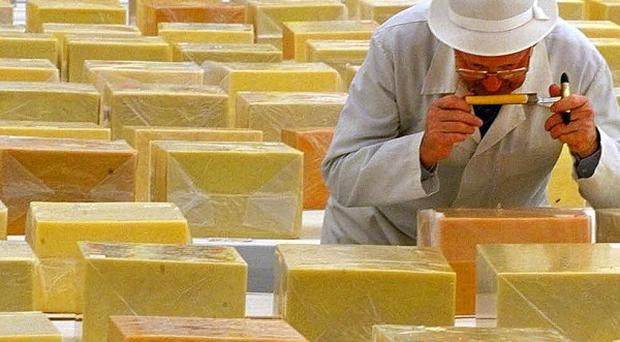Kerry Group owns six facilities here, including Dairy Produce Packers, makers of the popular cheese brand Coleraine Cheddar, and Henry Denny & Sons.