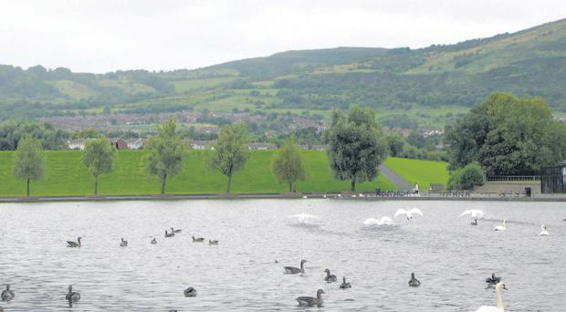 The Waterworks Park is home to a large number of ducks and swans.