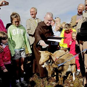 Father Brian McKay of the Carmelite Church on Whitefriar Street pours holy water on the head of one of three goats