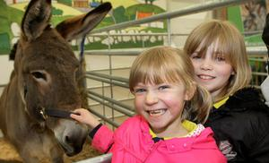 The first day of the Balmoral Show. Ellie McGill and Amy Morrow aged 8 petting a pony