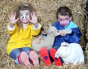 Children enjoy their day at the Balmoral Show