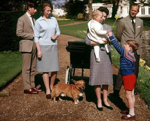 21/04/1965 Prince Andrew offering his brother Prince Edward a daffodil watched by his mother the Queen, his brother and sister the Prince of Wales and Princess Anne and father the Duke of Edinburgh on the grounds at Frogmore on the Queen's 39th birthday. PRESS ASSOCIATION Photo.