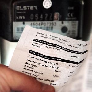 Plans for smart electricity meters in homes have been backed