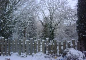 'Fenced in', Dunmurry. By  Hazel
