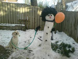 Laura O'Rourke's dog Lola back from a walk with the family snowman at Carryduff. Submitted by Gerry Carson