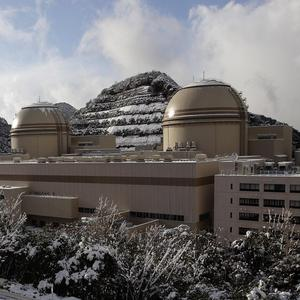 Nuclear reactors at Kansai Electric Power Co's Ohi power plant in Fukui prefecture, western Japan (AP)