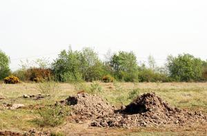 The site before the allotment was created