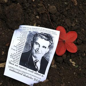 A leaflet with a picture of late communist dictator Nicolae Ceausescu is seen on his freshly dug up grave (AP)