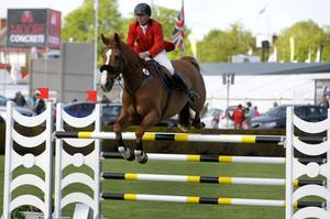 Showjumping at the Balmoral Show. Back in Business ridden by Mennell Watson