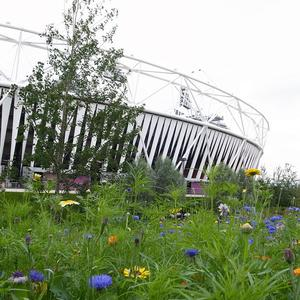 The Olympic Stadium, which has been shortlisted for the Royal Institute of British Architects' Stirling Prize