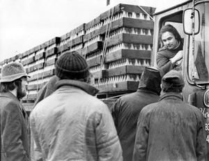 Milk strike at Bangor Dairies. Pickets on duty outside Bangor Dairies at Belast Road, Bangor, talk to the driver of a lorry returning empty milk bottles. 14/1/1975