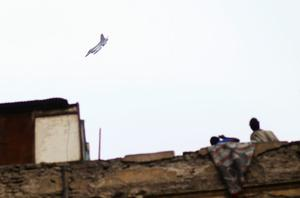 CAIRO, EGYPT - JANUARY 30:  Egyptians look at a fighter jet flying loudly over central Cairo in a residential neighborhood the afternoon of January 30, 2011 in Cairo, Egypt. Cairo remained in a state of flux and marchers continued to protest in the streets and defy curfew, demanding the resignation of Egyptian president Hosni Mubarek. As President Mubarak struggles to regain control after five days of protests he has appointed Omar Suleiman as vice-president. The present death toll stands at 100 and up to 2,000 people are thought to have been injured during the clashes which started last Tuesday. Overnight it was reported that thousands of inmates from the Wadi Naturn prison had escaped and that Egyptians were forming vigilante groups in order to protect their homes.   (Photo by Chris Hondros/Getty Images)