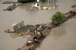 A Pakistan army helicopter drops relief supplies at a heavily flooded area of Rajanpur, in central Pakistan