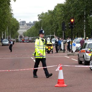 A woman was killed in an early morning collision on The Mall in central London