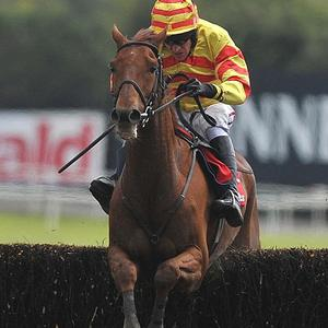 Mouae Morris will make future plans for China Rock after the Henessy Gold Cup