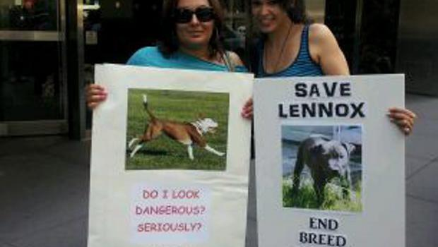 Protesters at British Consulate in New York call for the release of Belfast death row dog Lennox. Pictures submitted by Giovanna Nazario