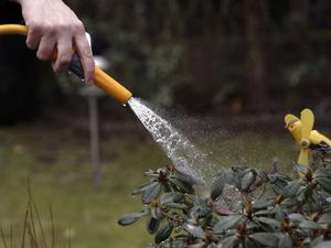 The Independent On Sunday reported on a hosepipe amnesty to help deal with the drought in south east England. 'People living in areas where the ban comes into force on Thursday are to be given the opportunity to surrender garden hoses at local police stations', they reported.